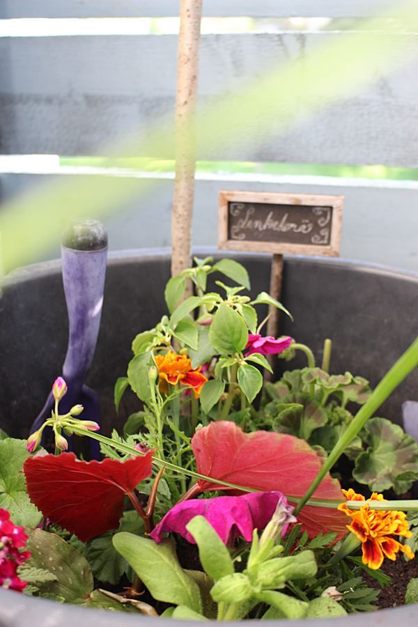 the creative night shift: a Balcony Flowerpot Garden