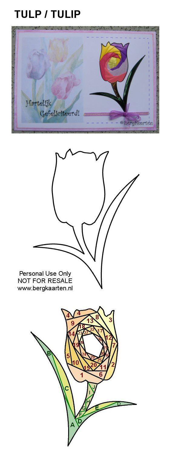 Irisvouwen: Tulp / Tulip