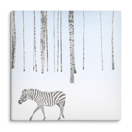 Zebra-Ochtendzon