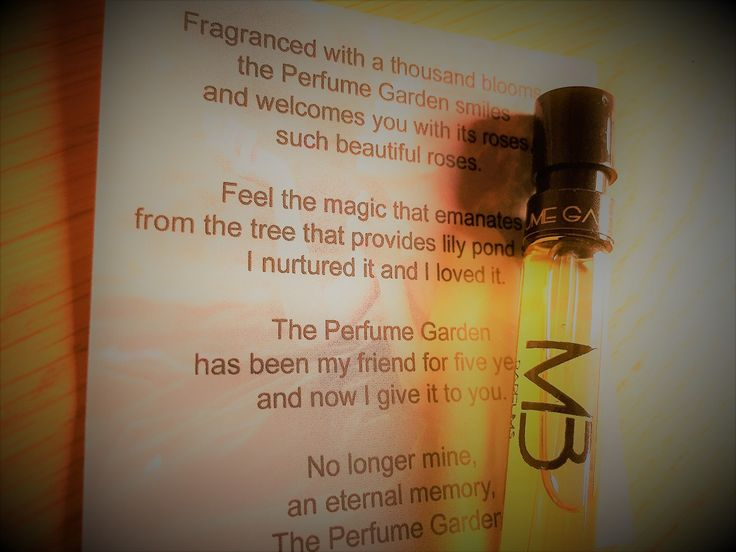 The Perfume Garden by Marina Barcenilla