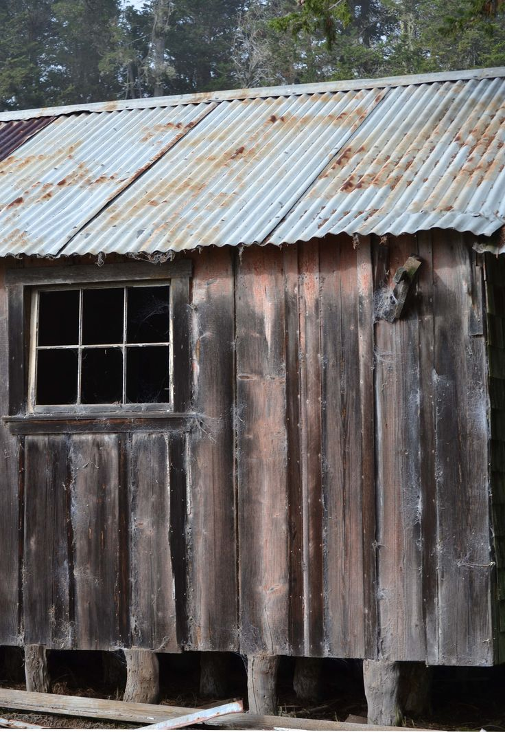 The lines of the corrugated iron and wooden battens made me think this hut was heading for the earth.