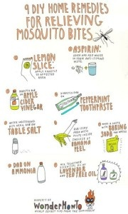 Mosquito bite cures.