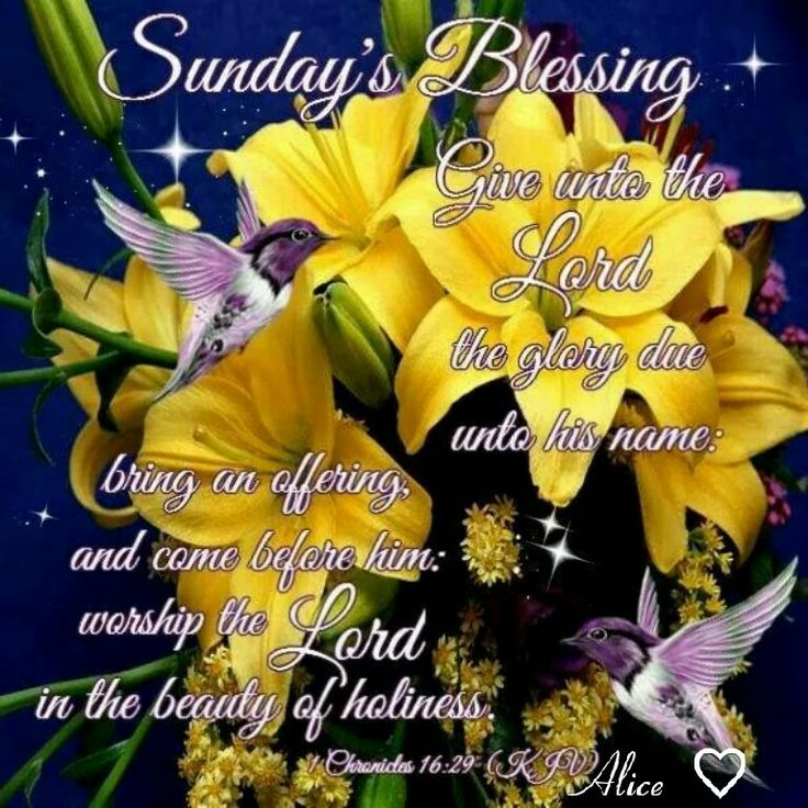 Sunday's Blessings!: The Lord, 1629 Kjv, Chronicles 1629, Chronicles 16 29, Sunday Blessed, 1611 Kjv The, Kjv The True, Prayer Holy, Beauty Blessed