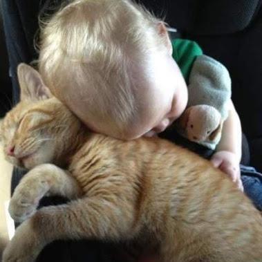 Sleeping Soundly...