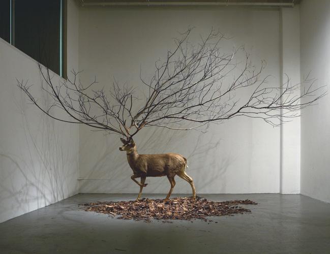 Deer sculpture / myeongbeom kim