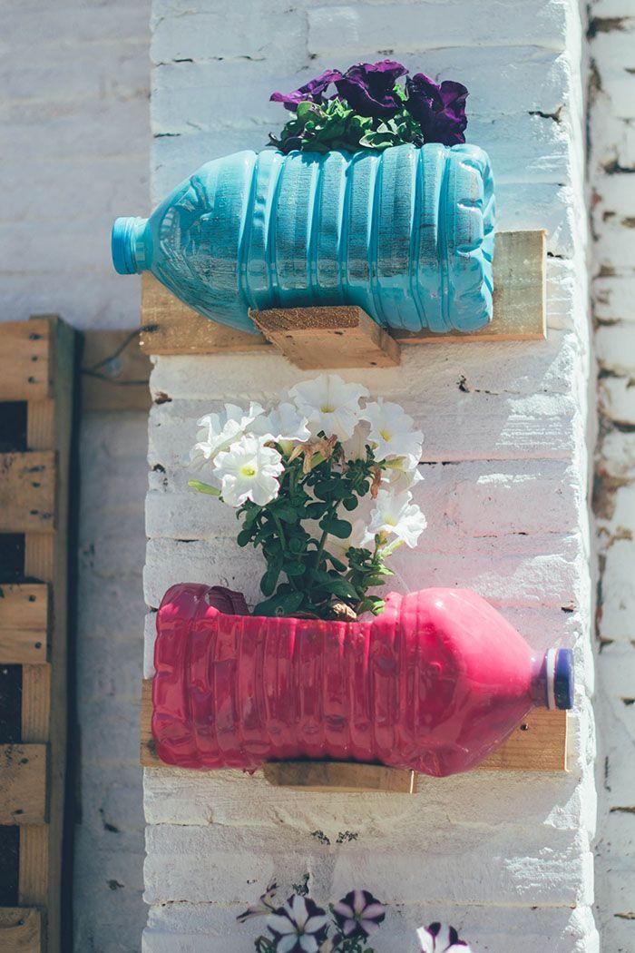 jardin vertical y huerto urbano cole-23