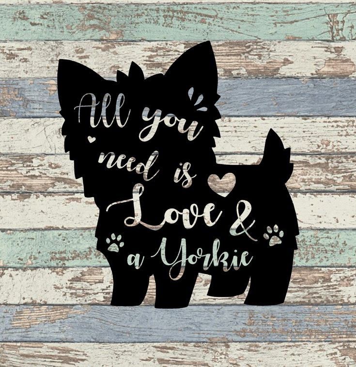 Download All You Need Is Love and A Yorkie SVG by Summer Sunflower ...
