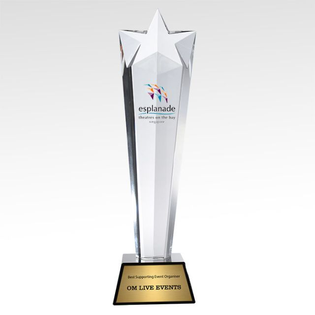 Are you looking for the most elegant way to honor an employee or valued client? Then look no further than the selection of crystal awards and glass trophies at Yoonly. Visit our site for more further details.