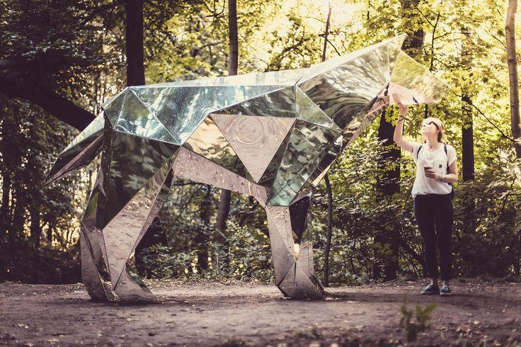 Все размеры |  волк и Джулия |  Flickr - Обмен фотографиями!