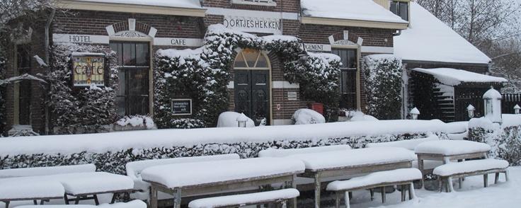 Oortjeshekken in de Ooijpolder (bij Nijmegen)