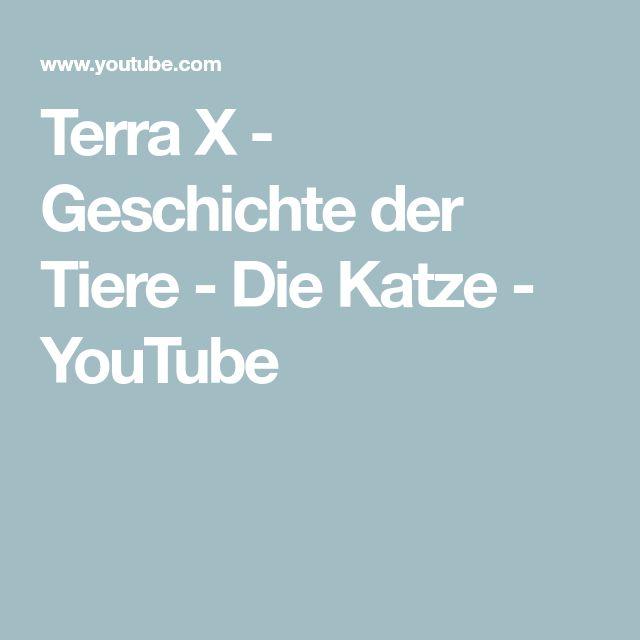 Terra X Katzen