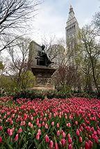 Таймс-сквер, Манхэттен Нью-Йорк.