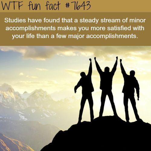 Minor vs Major accomplishments - WTF FUN FACTS