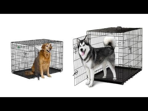 Top 5 Best Cheap Dog Kennels Best Cheap Dog Cages Cheap Dog Kennels for ...