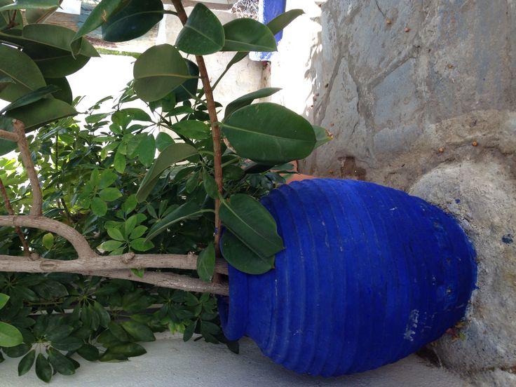 Bright blue planters