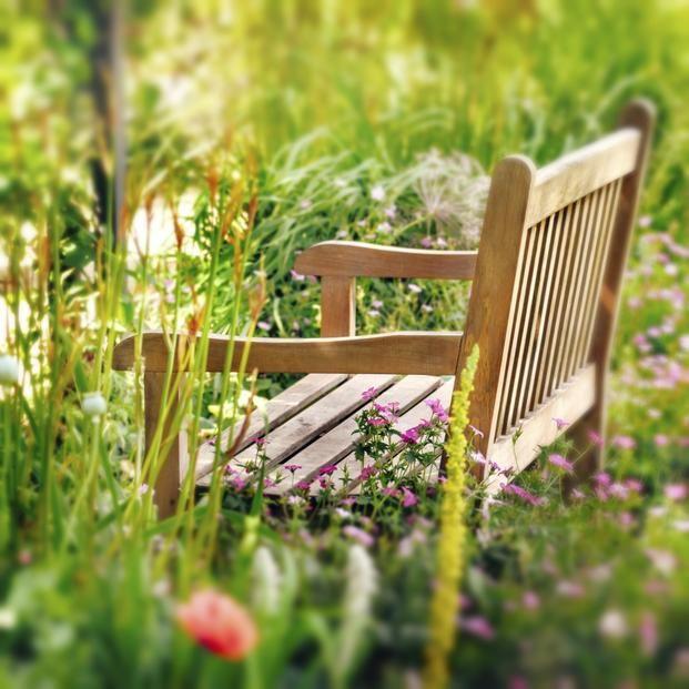 Ogród ekologiczny powinien się charakteryzować bioróżnorodnością