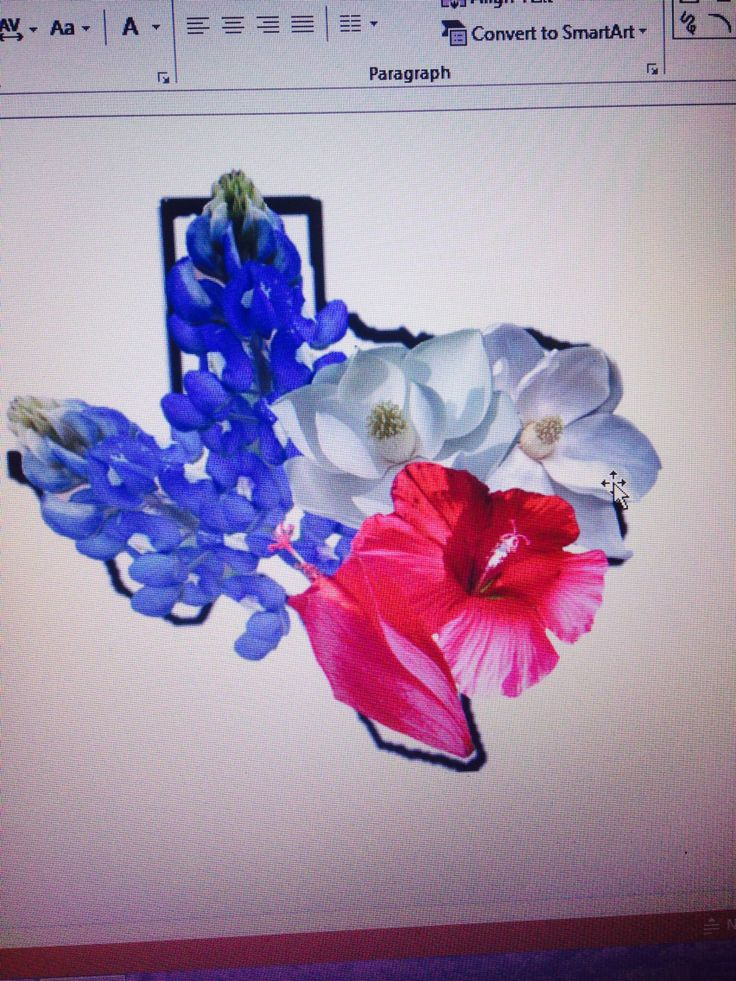 This is my design for a Texas tattoo I want. All the flowers are Texas flowers. Including the bluebonnet which is our state flower, and I have arranged them into the colors of the Texas flag.  Thinking of doing it water colored. But yes I want this