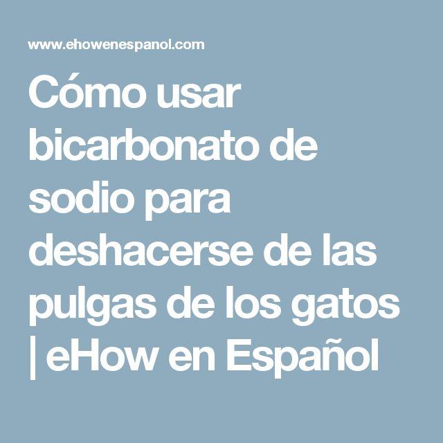 Cómo usar bicarbonato de sodio para deshacerse de las pulgas de los gatos | eHow en Español