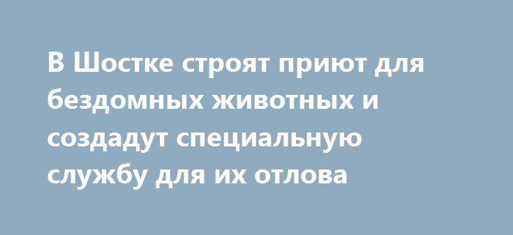 В Шостке строят приют для бездомных животных и создадут специальную службу для их отлова http://shostka.info/shostkanews/v_shostke_stroyat_priyut_dlya_bezdomnyh_zhivotnyh_i_sozdadut_special_nuyu_sluzhbu_dlya_ih_otlova  На вчерашней сессии городского совета обсуждался вопрос приюта для бездомных животных.