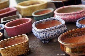 海外の「盆栽ブーム」で盆栽鉢まで大人気に!日本人が忘れかけた「TOKONAME」の魅力 | 職あれば食あり | ダイヤモンド・オンライン
