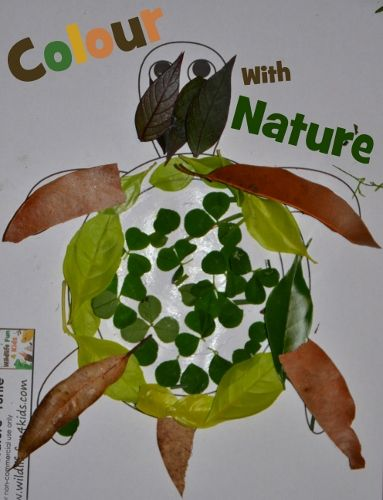Put the pencils down! Colour With Nature instead! Free animal templates to get you started.