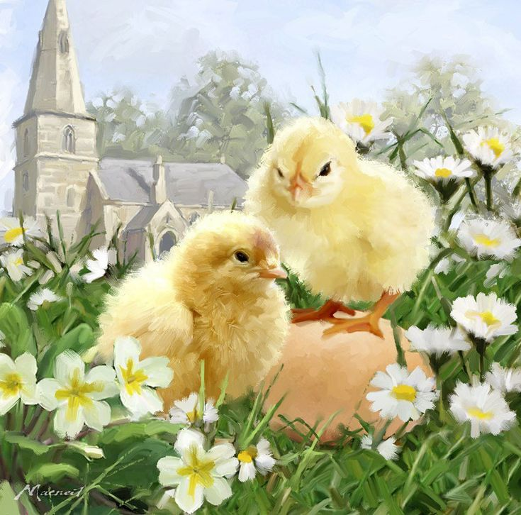 петренко цыплята открытки желаете подтянуть попу