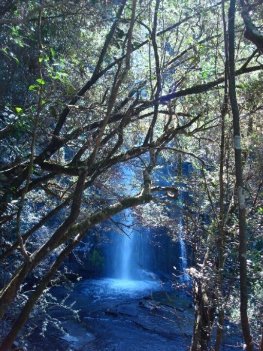 Waterfall in hogsback, south africa