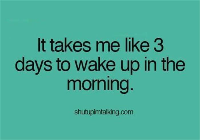 Best 25 Morning Quotes Ideas On Pinterest: Best 25+ Funny Morning Quotes Ideas On Pinterest