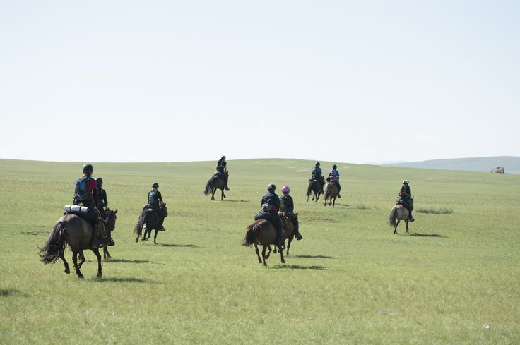 2016 Mongol Derby   Throw your hat in the ring