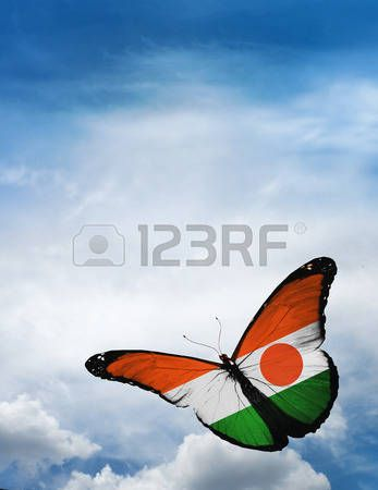 butterfly background: Niger flag butterfly flying on sky background