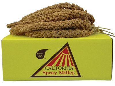 Golden Farm Products Millet 5 Lb