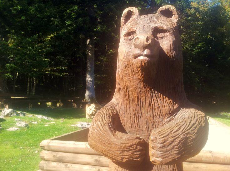 Als ik aan Slovenië denk, dan denk ik aan… Beren. En bomen. Bomen en beren. Bizar groene bossen. Een intimiderende, ondoordringbare wildernis die het grootste gedeelte van het land beslaat en waar het dus wemelt van de bruine beren. Tegen de tijd dat ik in Slovenië aankwam, was het oktober. De herfst had zijn intrede …