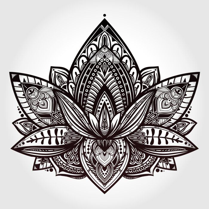 """Képtalálat a következőre: """"fleur de lotus dessin"""""""