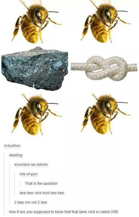 Just The Bee S Knees Boys Bathroom Inspiration And A Mood: 17 Best Images About Bee Funny On Pinterest