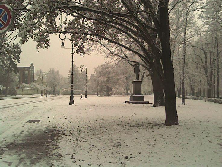 Nevicata al Valentino - Dicembre 2010