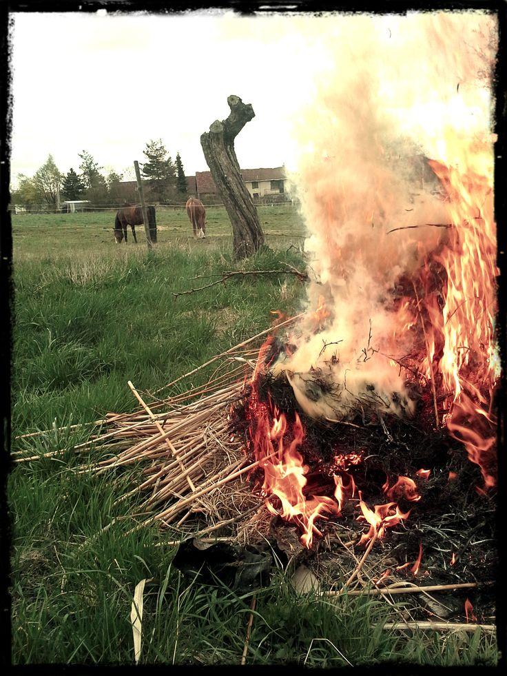Očista pozemku plamenem...