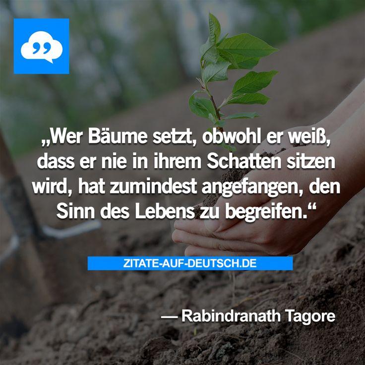 #Baum, #Leben, #Schatten, #Spruch, #Sprüche, #Zitat, #Zitate, #RabindranathTagore
