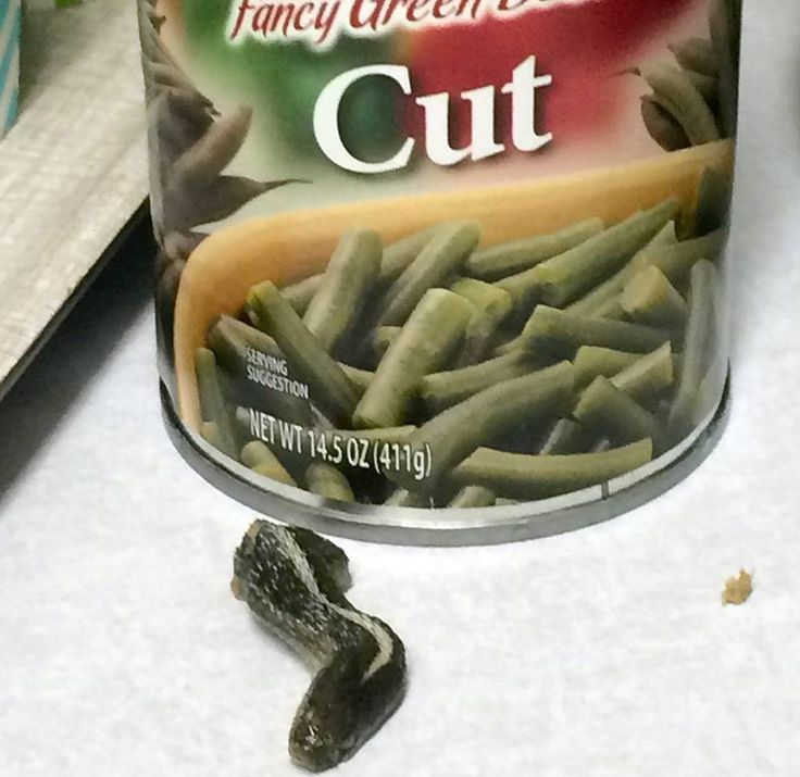 A snake head that Troy Walker, of Farmington, Utah, says she found in a can of green beans.