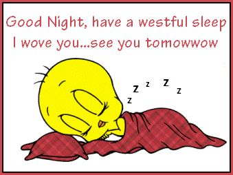 Good Night quotes cute quote night tweety bird goodnight good night goodnight…