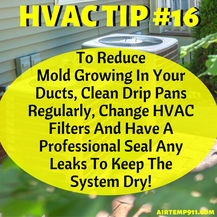 Learn How To Prevent Mold From Thriving In Your Ducts! in