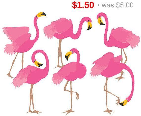 70% di SCONTO VENDITA Flamingo Clipart - digitale vettoriale Flamingo, uccello, esotica, rosa fenicottero Clip Art per uso personale e commerciale
