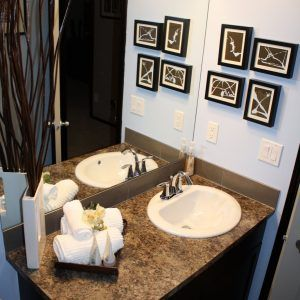 Image Gallery For Website Bathroom Decorating Ideas Blue And Brown