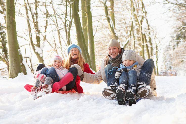 зимние фото семьи в лесу: 8 тыс изображений найдено в Яндекс.Картинках
