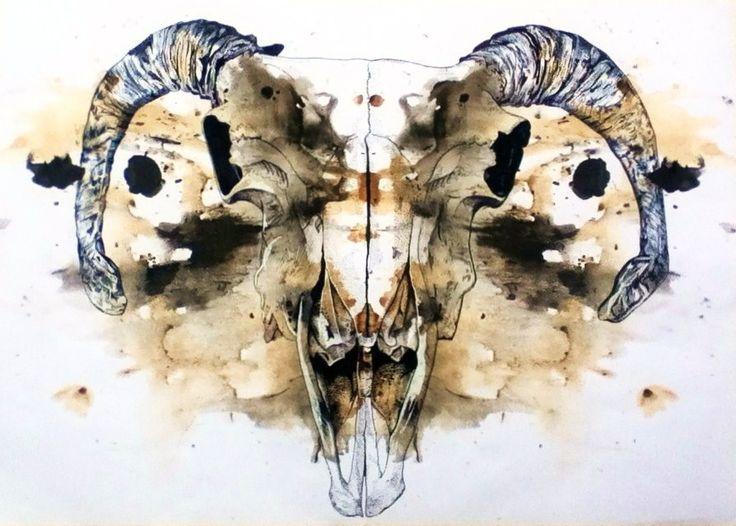 Rams Skull - Pen, Coffee, Ink