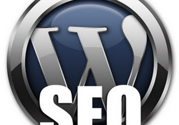 PurpleTurtlePro: Get a professional SEO job on your Wordpress Website for $5, on fiverr.com