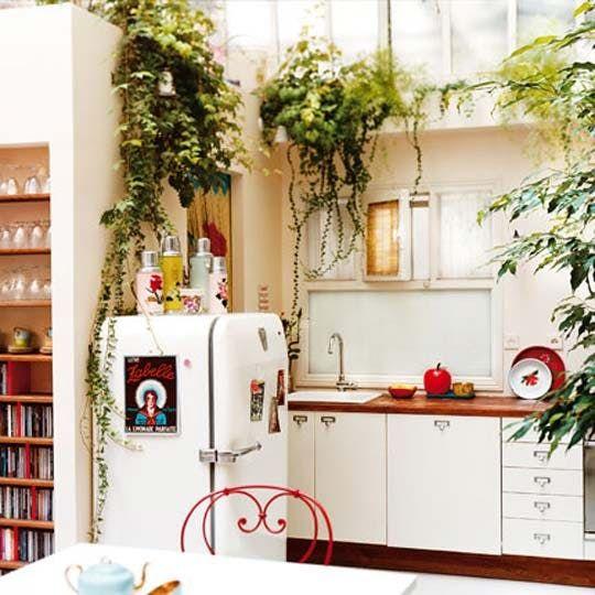 Znalezione obrazy dla zapytania kitchen ivy