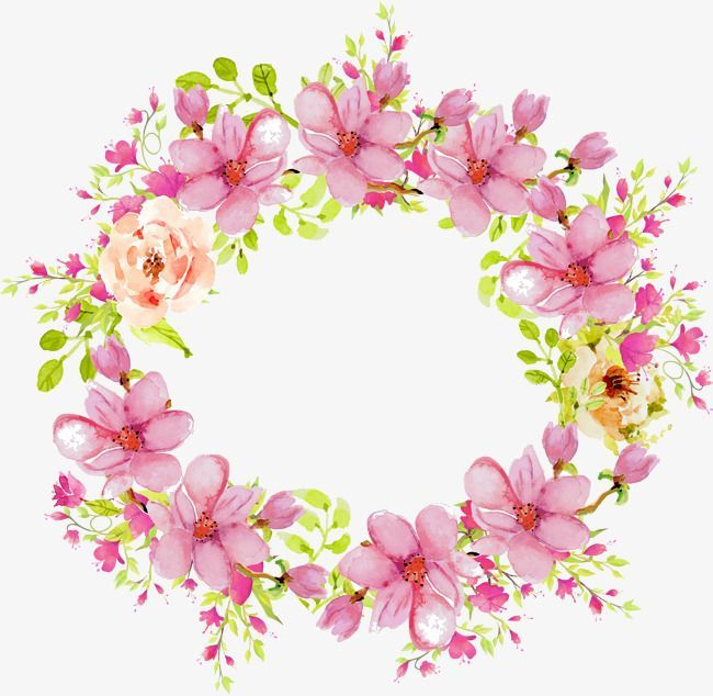 Розовая акварель ручной росписью цветочные кольца цветок ротанг границы PNG и вектор