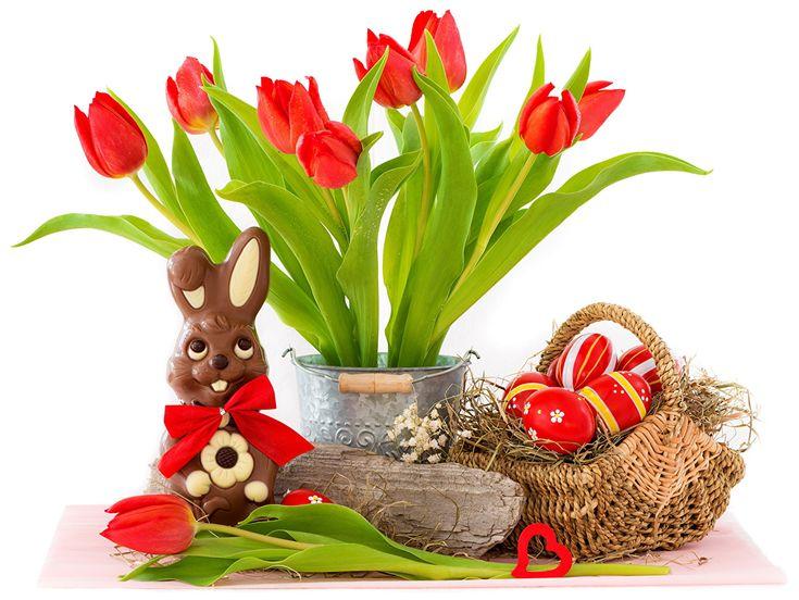 Día festivos Pascua Conejo Tulipas Cesta de mimbre Huevo Rojo Flores
