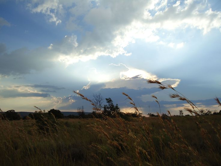 African Sunset - Mabalingwe Game Reserve, South Africa 2013