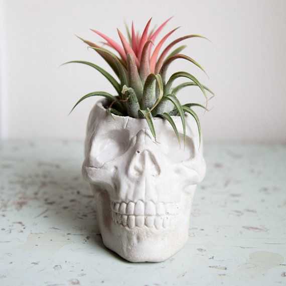 Skull Planter Halloween garden decor by brooklynglobal on Etsy
